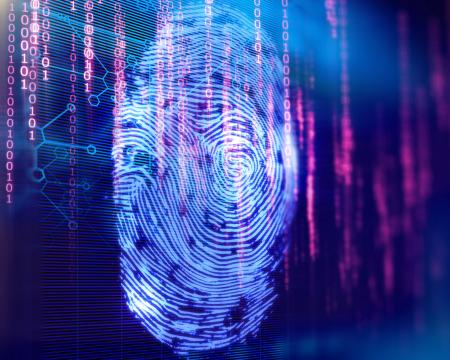 Scan of a fingerprint