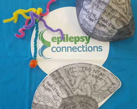 Epilepsy Connections - Pipe Cleaner Neuron and 'cut-out' brain model