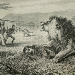 A young David Livingstone and his encounter with a lion